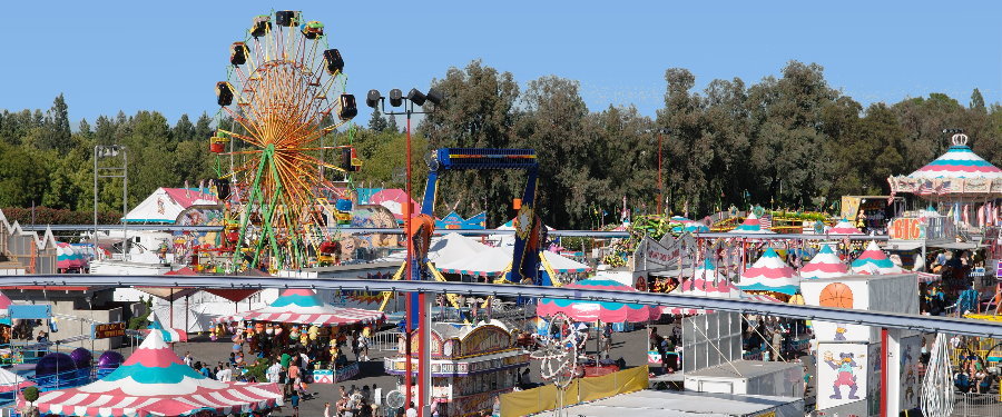 22 Maricopa County Fair – 2013